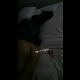 https://www.sexking.site/data/editor/2006/thumb-c2bab86f2a9fa956889d9814d3f87b13_1591171846_1575_80x80.png